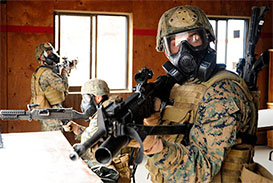 marine security forces